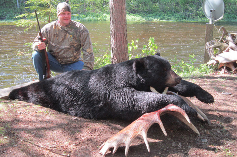 New Brunswick Black Bear, Moose & Deer Hunts