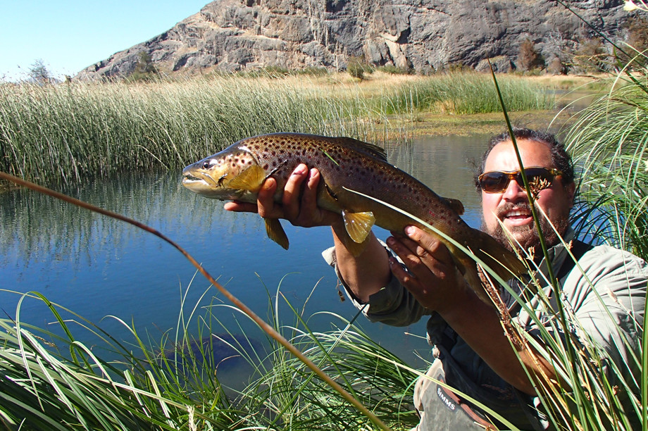 Patagonia Fishing for Rainbows and Browns